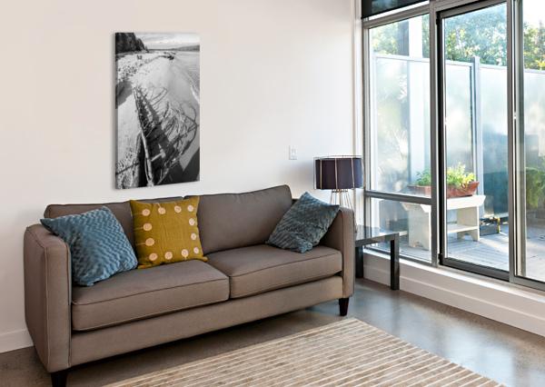 DRIFTWOOD AP 2482 B&W ARTISTIC PHOTOGRAPHY  Canvas Print