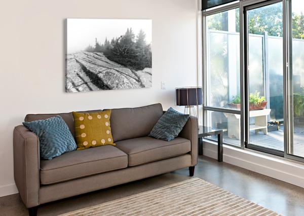 LICHEN AND GRANITE AP 2340 B&W ARTISTIC PHOTOGRAPHY  Canvas Print