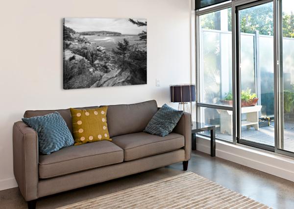 ACADIA AP 2376 B&W ARTISTIC PHOTOGRAPHY  Canvas Print