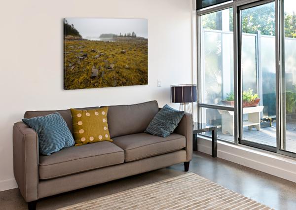 LOW TIDE AP 2271 ARTISTIC PHOTOGRAPHY  Canvas Print