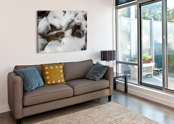 ICE AP 2726 B&W ARTISTIC PHOTOGRAPHY  Canvas Print