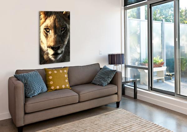 LIONS HEAD ADRIAN BROCKWELL  Canvas Print