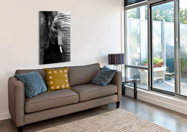ELEPHANT ADRIAN BROCKWELL  Canvas Print