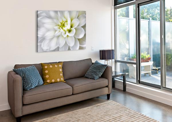 WHITE DAHLIA ADRIAN BROCKWELL  Canvas Print