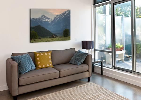 THE BARN COREY DOUGLAS  Canvas Print