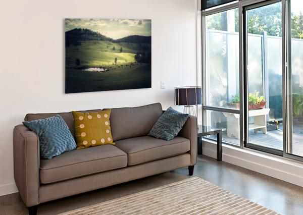 WHERE THE BISON ROAM COREY DOUGLAS  Canvas Print