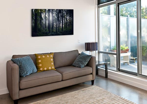 SPENCER BUTTE FOREST COREY DOUGLAS  Canvas Print