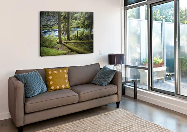 THE MCKENZIE RIVER COREY DOUGLAS  Canvas Print