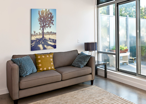 JOSHUA TREE NATIONAL PARK COREY DOUGLAS  Canvas Print