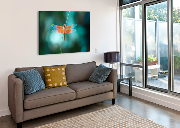 KINDNESS IS THE KEY TO MAGIC COLLECTION 1-4 NAZAN SAATCI  Canvas Print