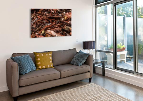IMG_4228 AUDIE ALEXANDER  Canvas Print