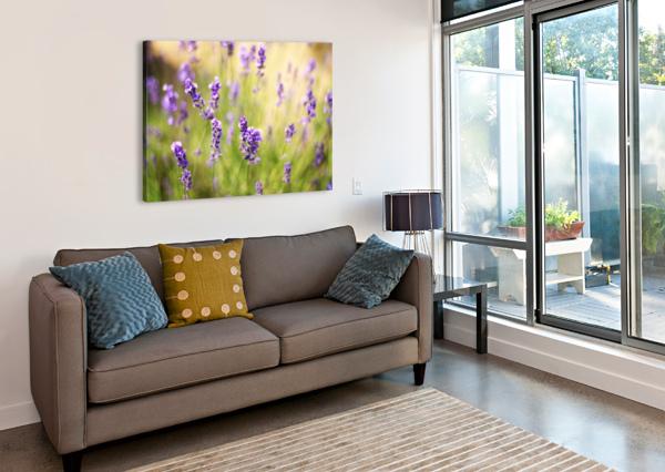 LAVENDER FLOWERS LEVENTE BODO  Canvas Print
