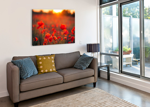 BEAUTIFUL SUNSET POPPY FLOWERS LEVENTE BODO  Canvas Print