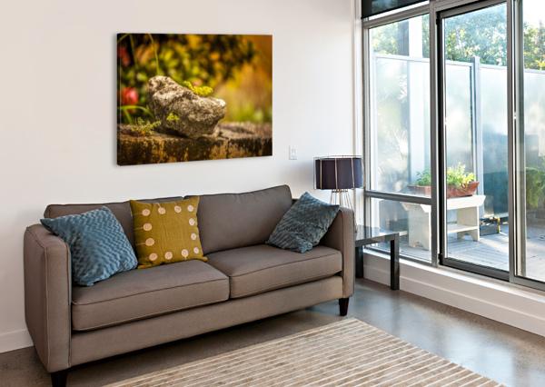 IMG_1288 AUDIE ALEXANDER  Canvas Print