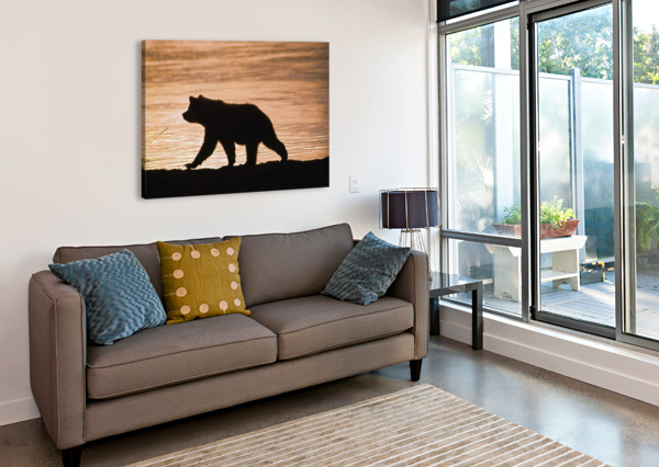 YOUNG GRIZZLY BEAR (URSUS ARCTOS) WALKS ALONG EDGE OF LAKE AT SUNSET PACIFICSTOCK  Canvas Print