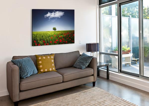 LONE TREE A POPPIES FIELD BESS HAMITI  Canvas Print