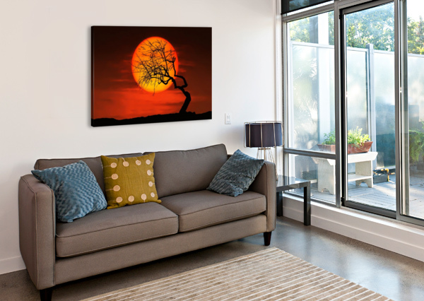 BIRD ON SUN BESS HAMITI  Canvas Print