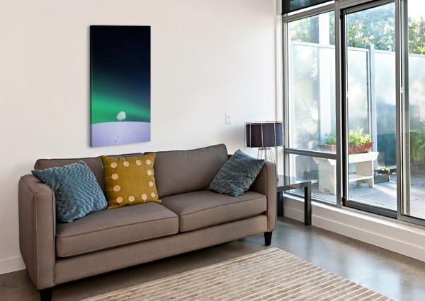 APPLE BESS HAMITI  Canvas Print