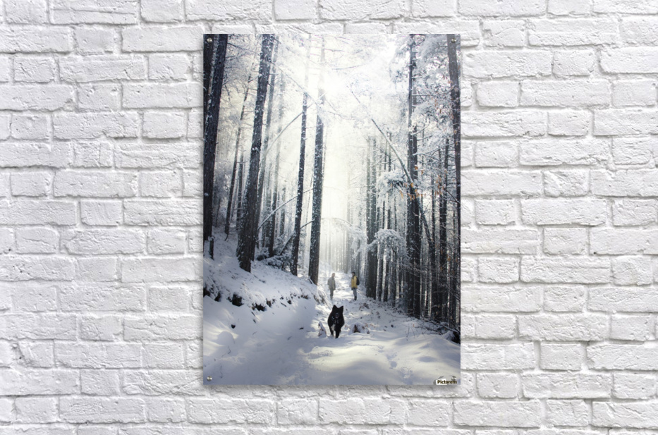 Explore nature  Acrylic Print