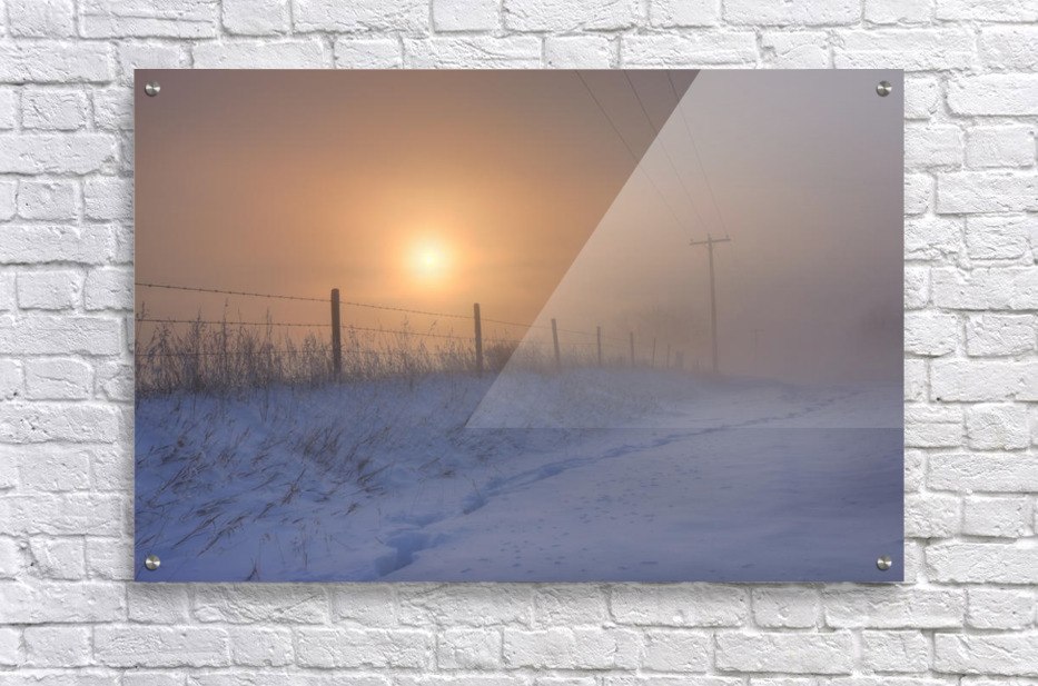 Foggy Winter Sunrise Over Barbed Wire Fence And Hydro Lines, Alberta Prairie  Acrylic Print