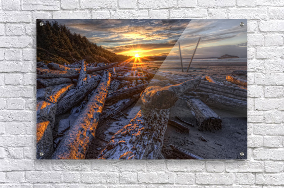 Sunrise Over The Logs At Long Beach, Pacific Rim National Park, British Columbia.  Acrylic Print