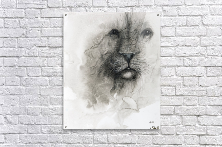 Illustration of a lion's face on a white background  Acrylic Print