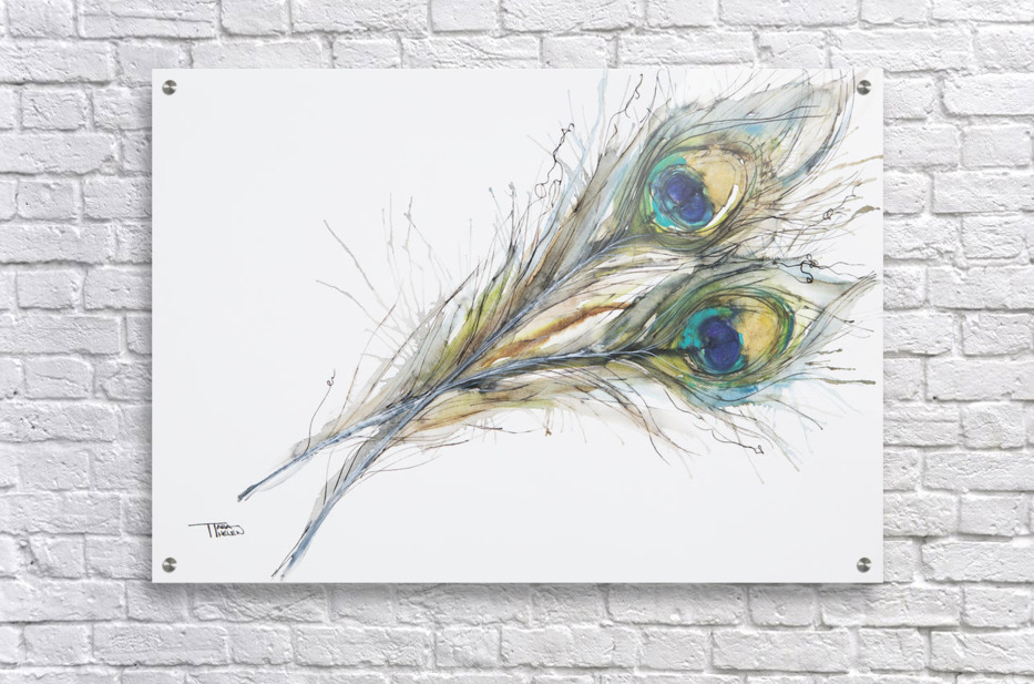 Watercolor painting of two peacock feathers for Painting feathers on canvas