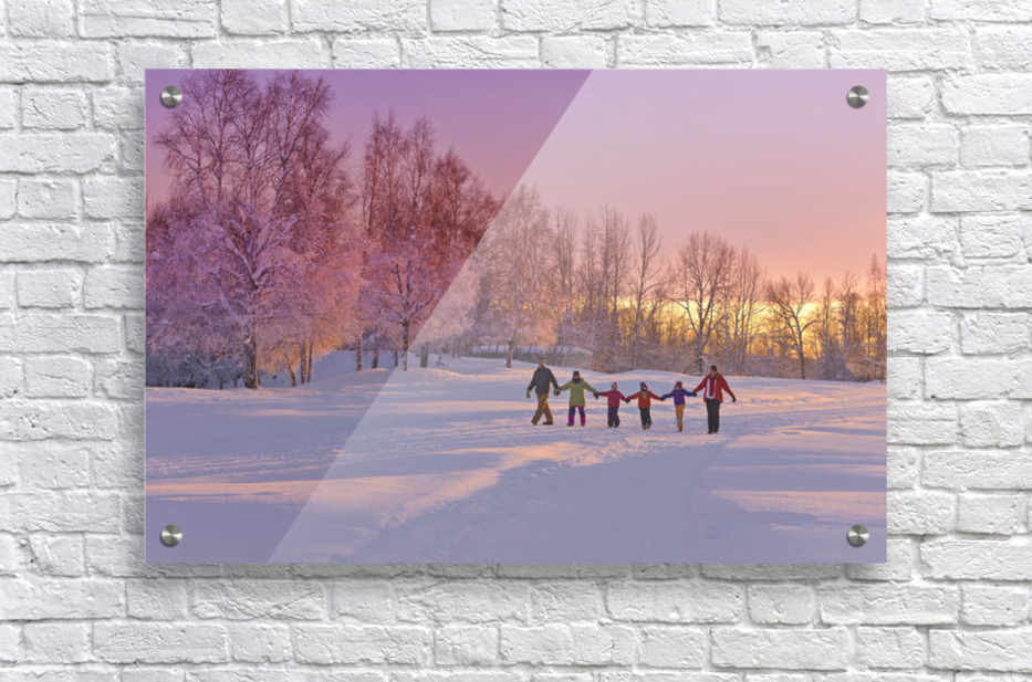 Family Group, Holding Hands, Walk On A Snow Path At Sunset With A Birch Forest In The Background, Russian Jack Springs Park, Anchorage, Southcentral Alaska, Winter  Acrylic Print