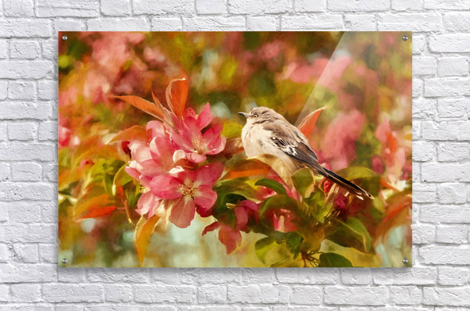 Sparrow In The Apple Tree  Acrylic Print
