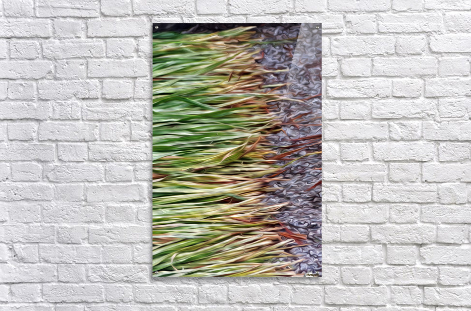 Cut Grass and Pebbles  Acrylic Print