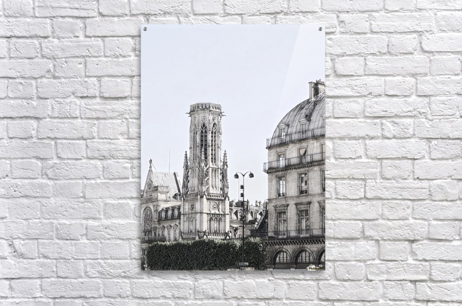 Notre Dame & Shade  Acrylic Print