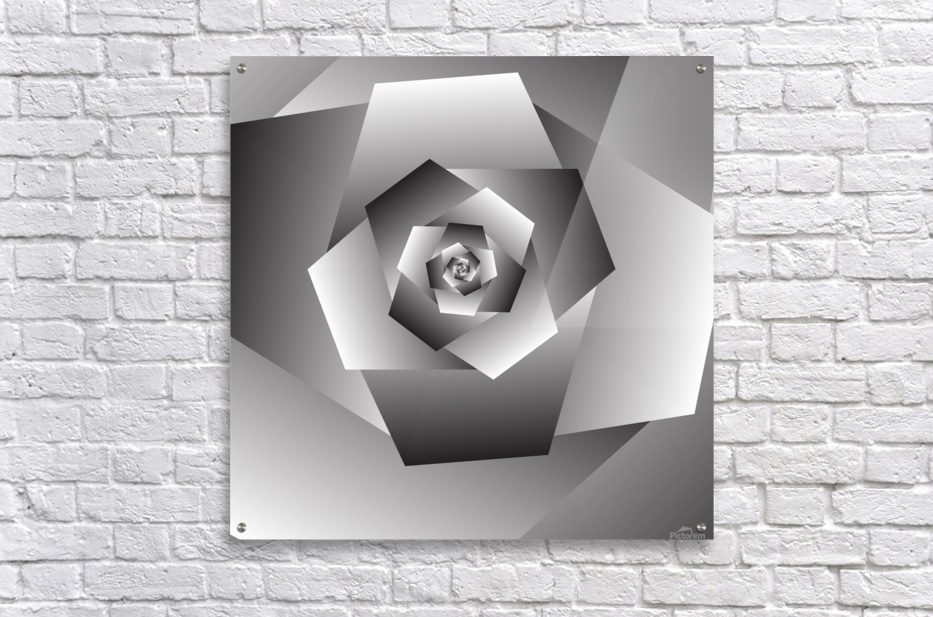 Monochrome Rose Art  Acrylic Print