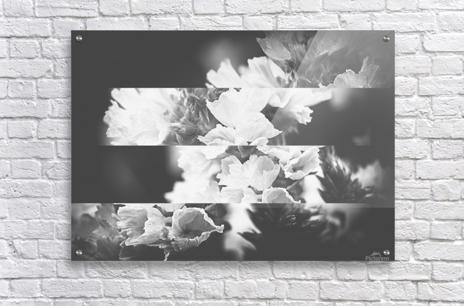 Flower Bells Collage BnW  Acrylic Print