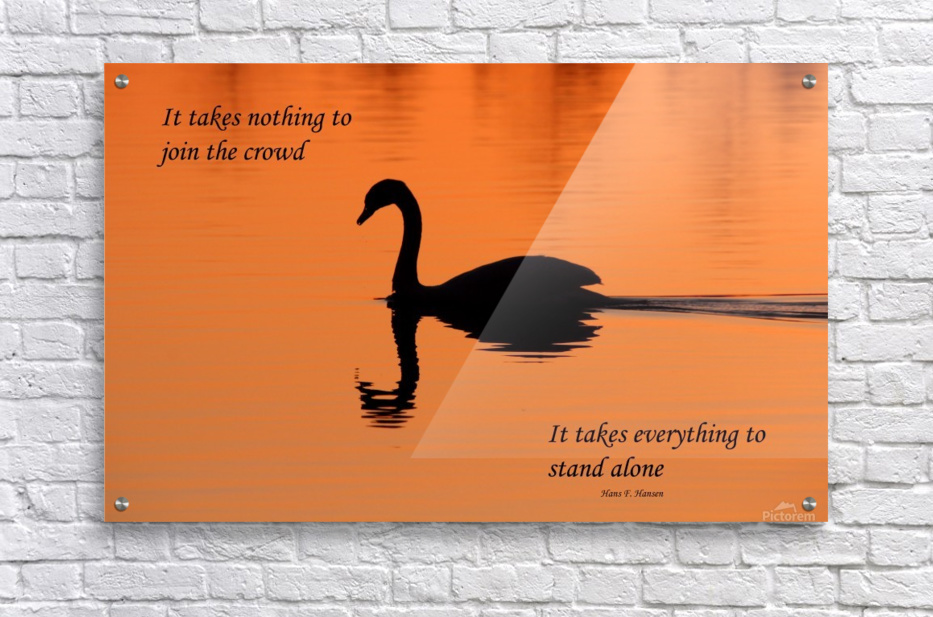 Stand Alone  Acrylic Print