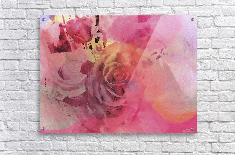 June Rose  Acrylic Print