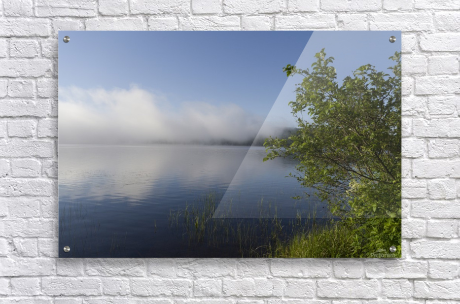 Early Morning Fog Bank  Acrylic Print