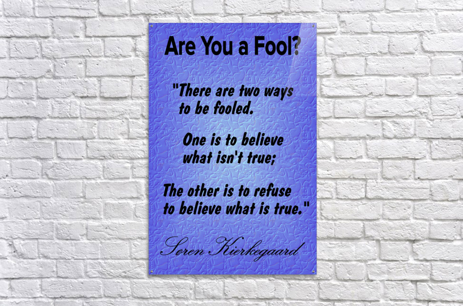 2-Are You a Fool   Acrylic Print