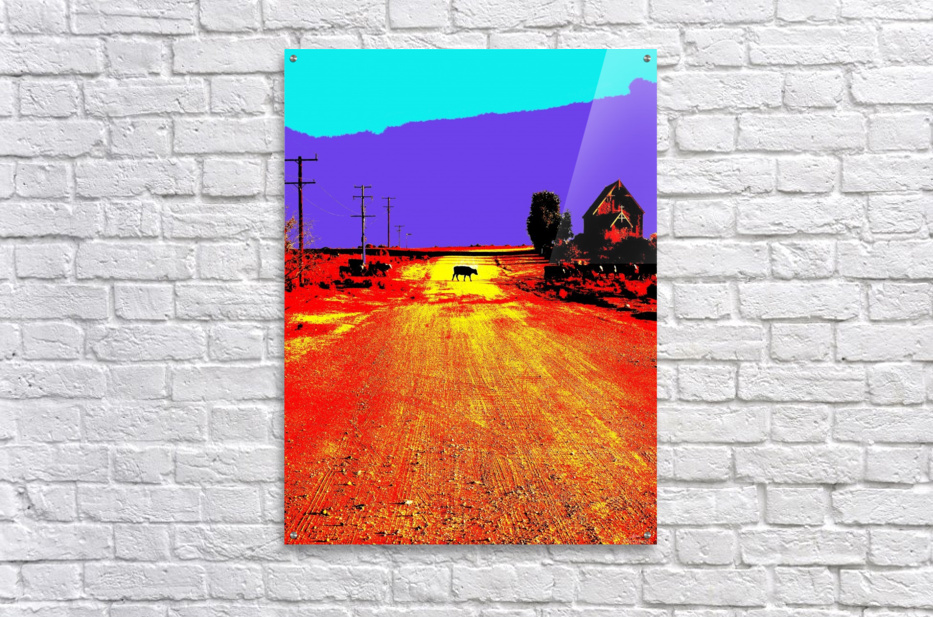 Cows Crossing - Outback Australia  Acrylic Print