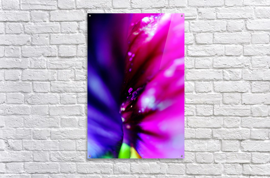 In between colorful flowers 02  Acrylic Print