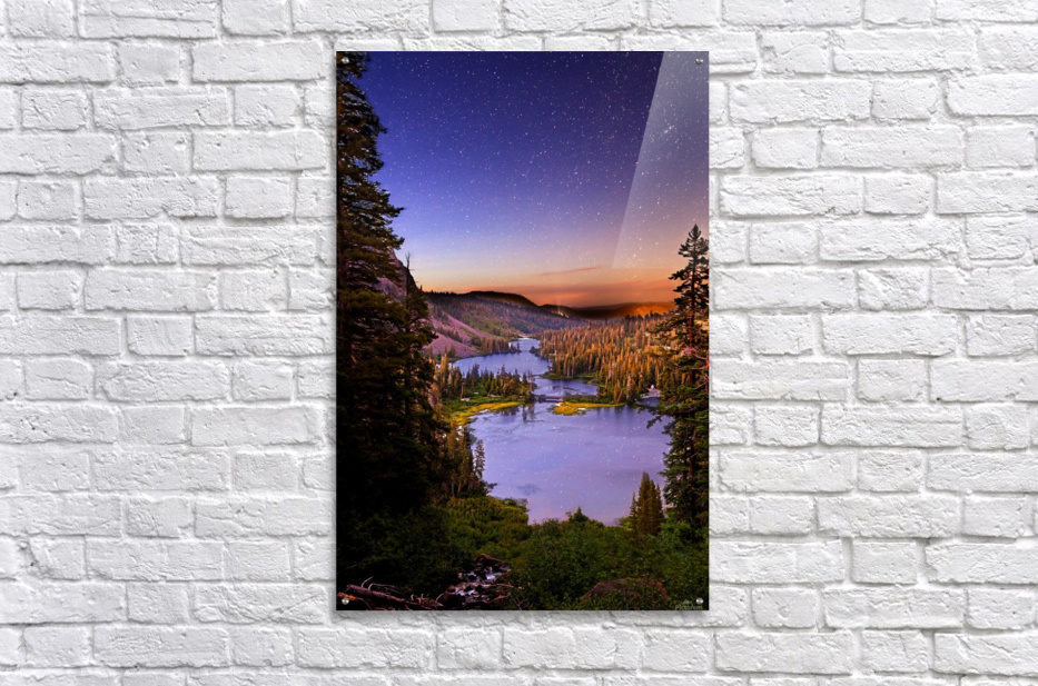 Twin Magic  Acrylic Print