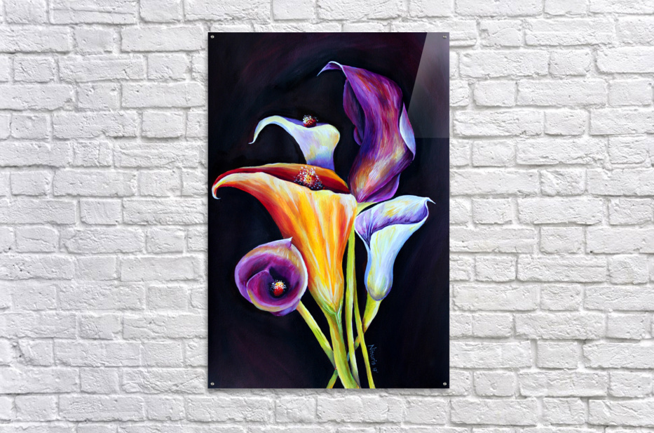 Calla Lilies in Blooming Bouquet  Acrylic Print