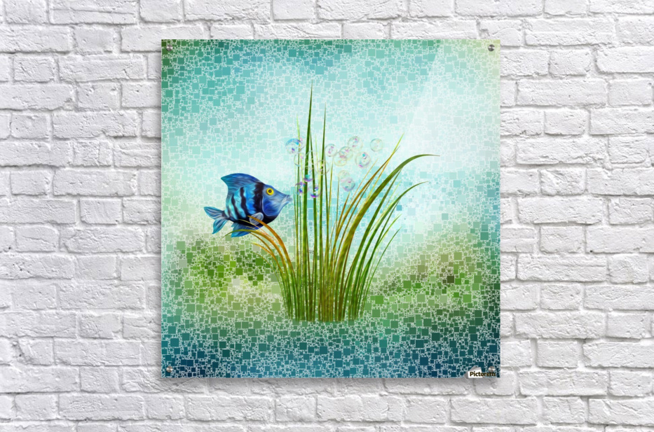 Billy the fish  Acrylic Print