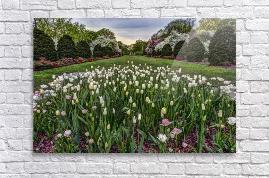 Brooklyn botanical garden prints garden ftempo Brooklyn botanical garden promo code