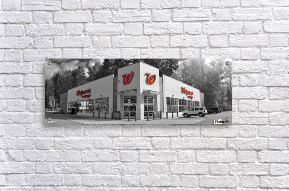 walgreens panoramic - steve canvas