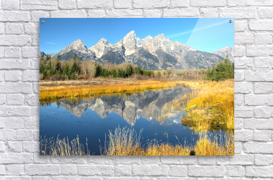 Beavers View of Tetons  Acrylic Print