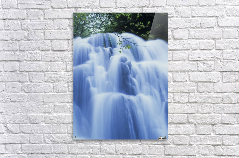Sweet Creek waterfalls along the hiking trail; Mapleton, Oregon, United States of America  Acrylic Print