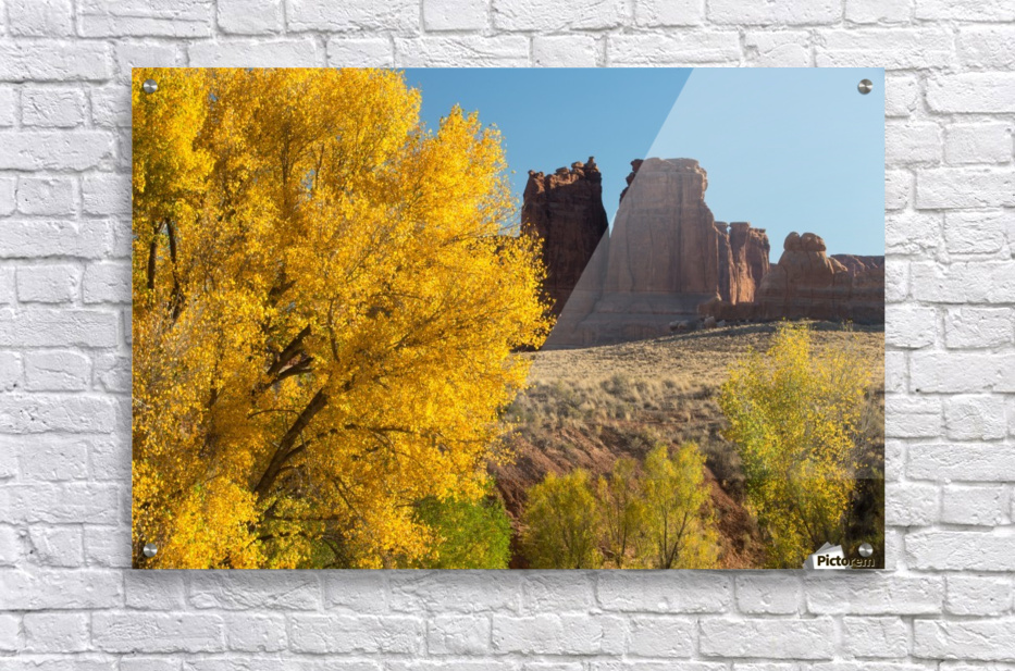 Fall at Courthouse Wash  Acrylic Print