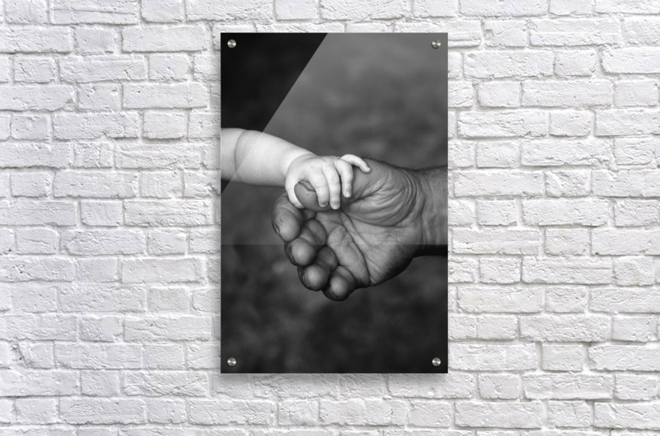 Baby's Hand Holding On To Adult Hand  Acrylic Print
