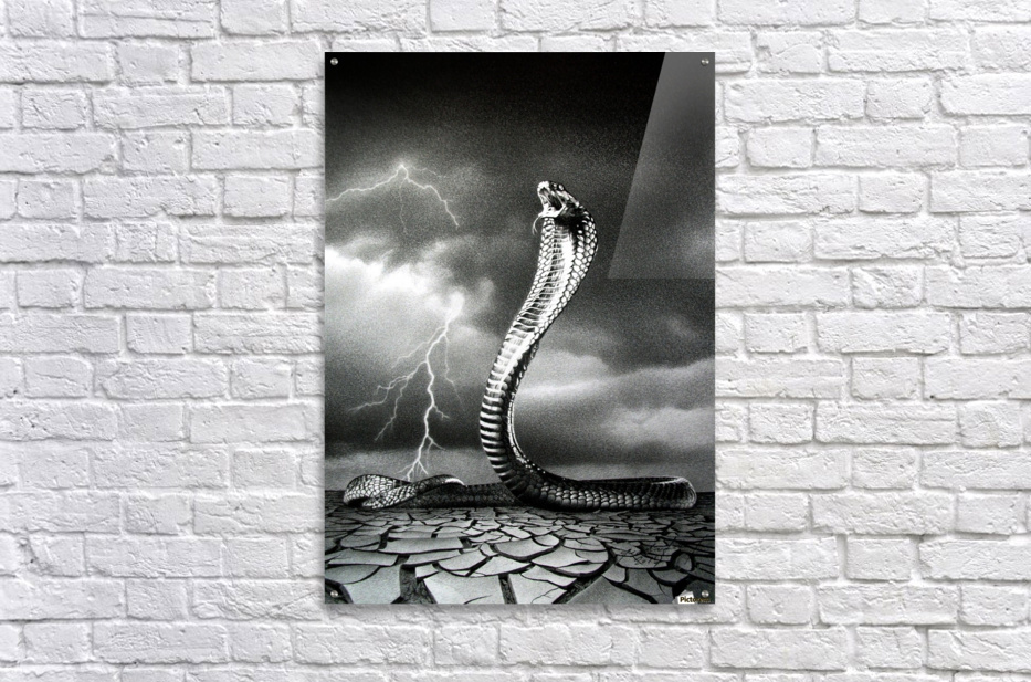 THE STORM IS COMING...  Acrylic Print