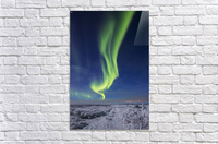 The aurora borealis shines above an ATV trail covered in snow, south of Delta Junction; Alaska, United States of America  Acrylic Print